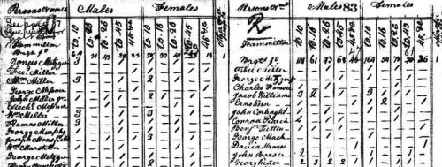 A historic census schedule.